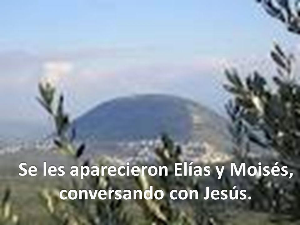 Así, como Moisés y Elías fueron llevados por Dios a una montaña santa, para que allí fueran testigos de su gloria, los apóstoles también suben a la montaña y en ella Jesús les manifiesta su gloria.