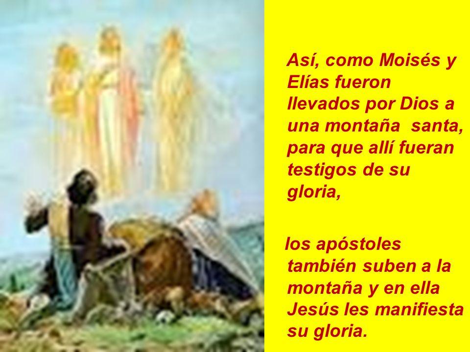 Así, como Moisés y Elías fueron llevados por Dios a una montaña santa, para que allí fueran testigos de su gloria, los apóstoles también suben a la mo