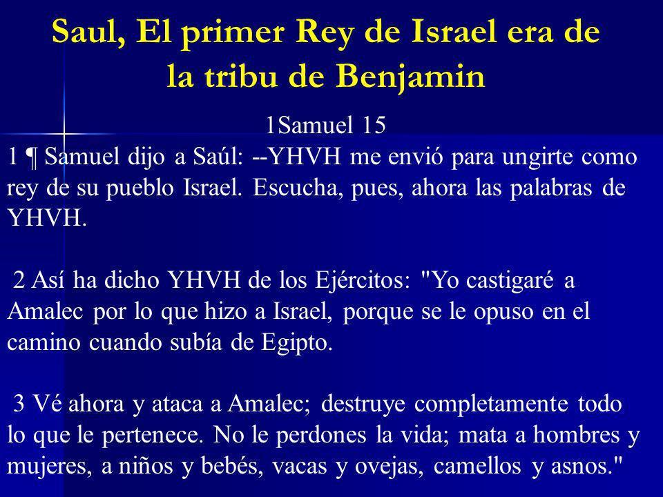 Saul, El primer Rey de Israel era de la tribu de Benjamin 1Samuel 15 1 ¶ Samuel dijo a Saúl: --YHVH me envió para ungirte como rey de su pueblo Israel