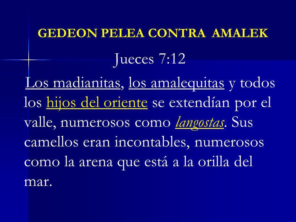 GEDEON PELEA CONTRA AMALEK Jueces 7:12 Los madianitas, los amalequitas y todos los hijos del oriente se extendían por el valle, numerosos como langost
