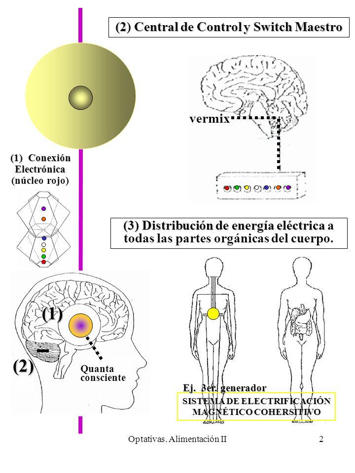 Optativas. Alimentación II2 Quanta consciente vermix (2) (1) (2Central de Control y Switch Maestro (2) Central de Control y Switch Maestro (3)Distribu