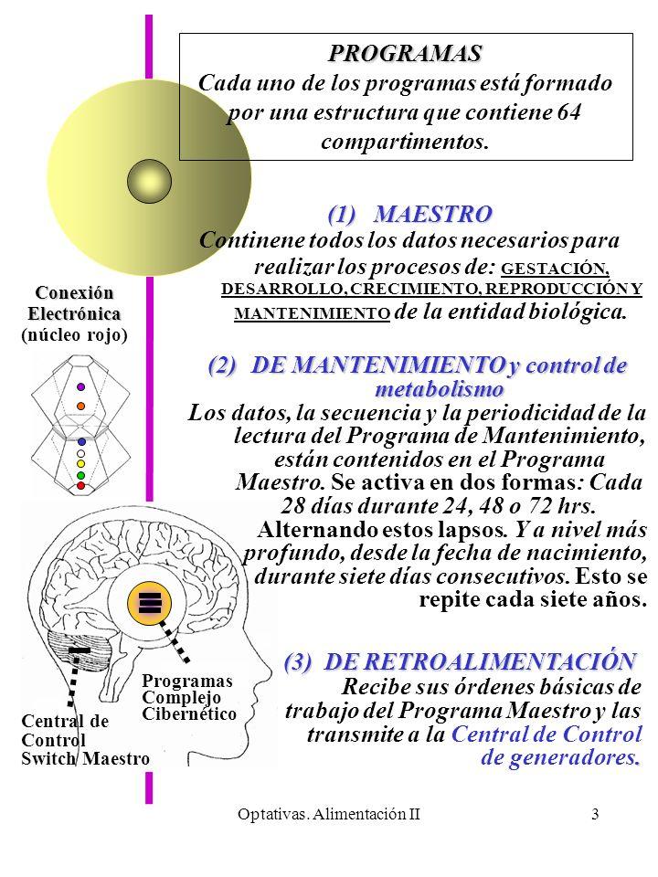 Optativas. Alimentación II3 Programas Complejo Cibernético ConexiónElectrónica (núcleo rojo) PROGRAMAS Cada uno de los programas está formado por una