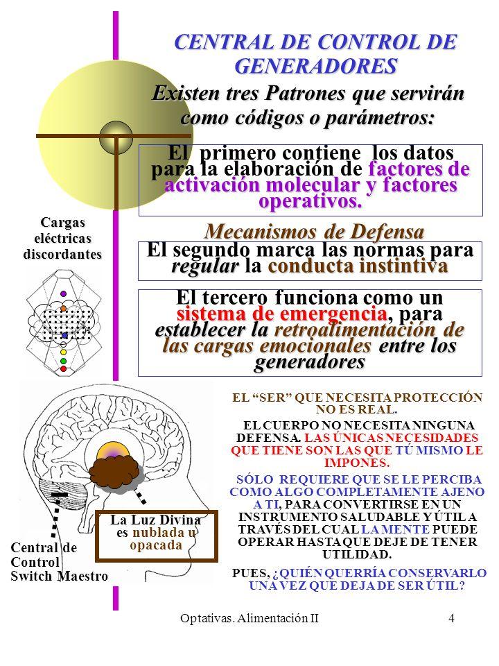 Optativas. Alimentación II4 La Luz Divina es nublada u opacada Cargas eléctricas discordantes CENTRAL DE CONTROL DE GENERADORES Existen tres Patrones