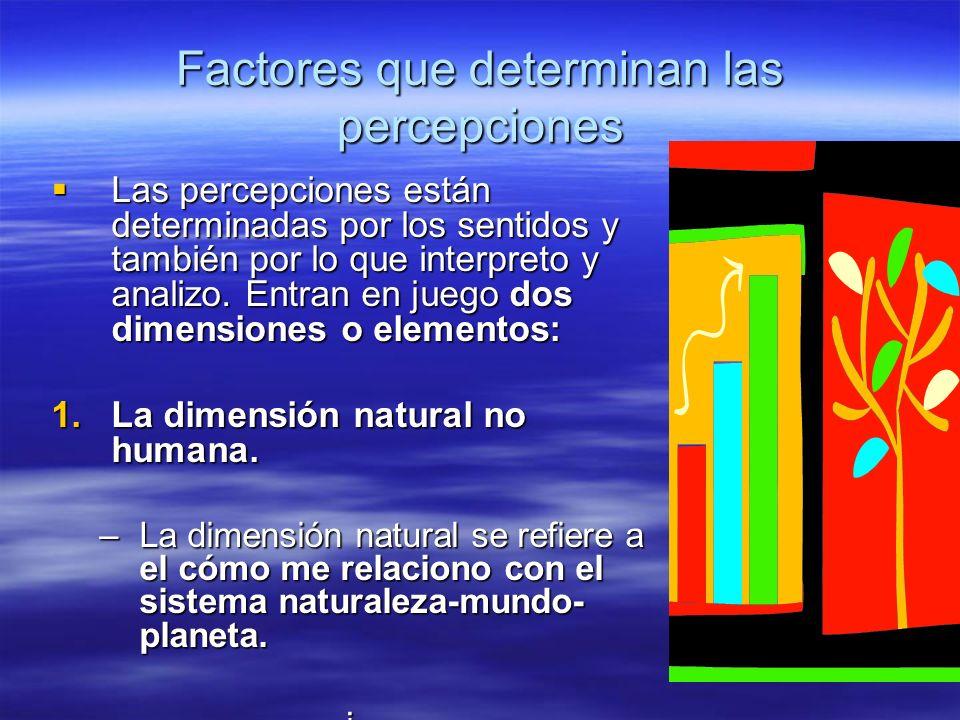 Factores que determinan las percepciones Las percepciones están determinadas por los sentidos y también por lo que interpreto y analizo. Entran en jue