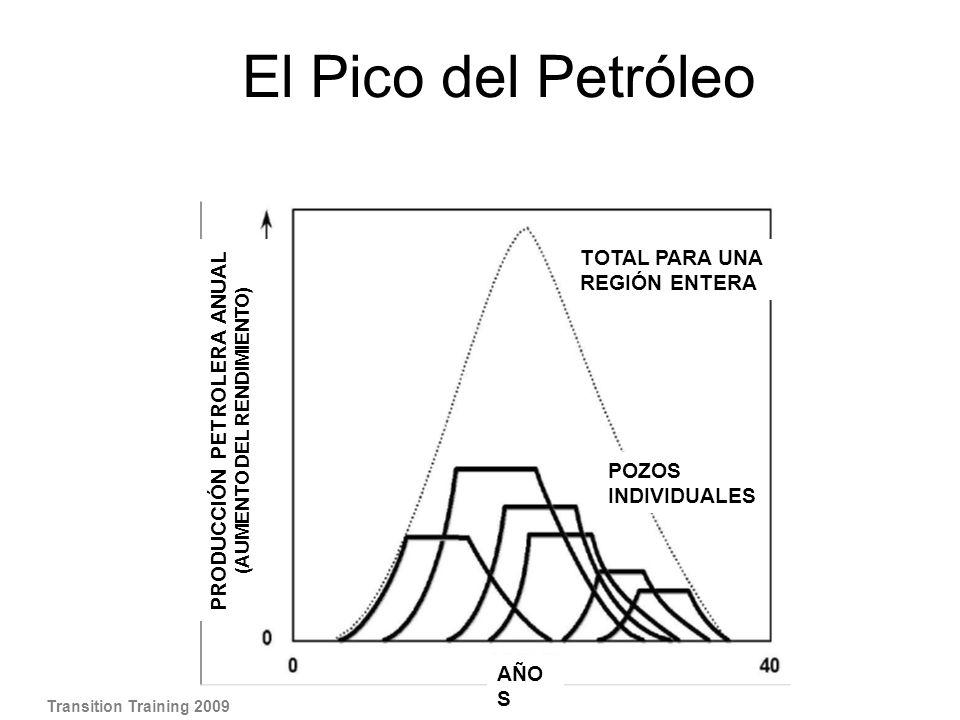 El Pico del Petróleo Transition Training 2009 TOTAL PARA UNA REGIÓN ENTERA AÑO S PRODUCCIÓN PETROLERA ANUAL (AUMENTO DEL RENDIMIENTO) POZOS INDIVIDUAL