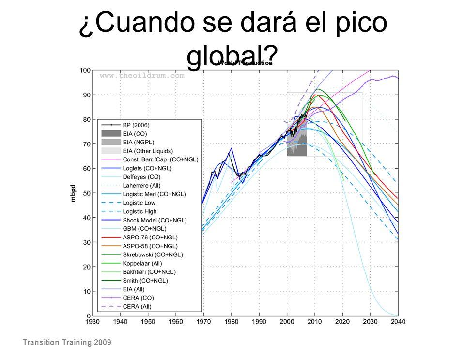 Transition Training 2009 ¿Cuando se dará el pico global?