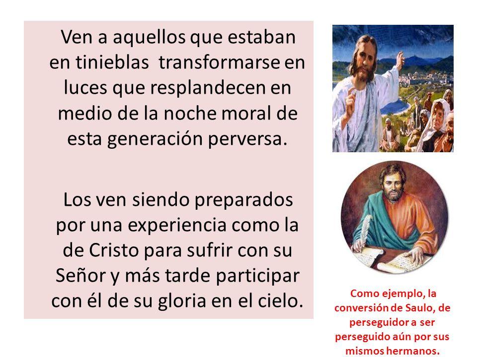2 Corintios 11:23-28.¿Son ministros de Cristo?....
