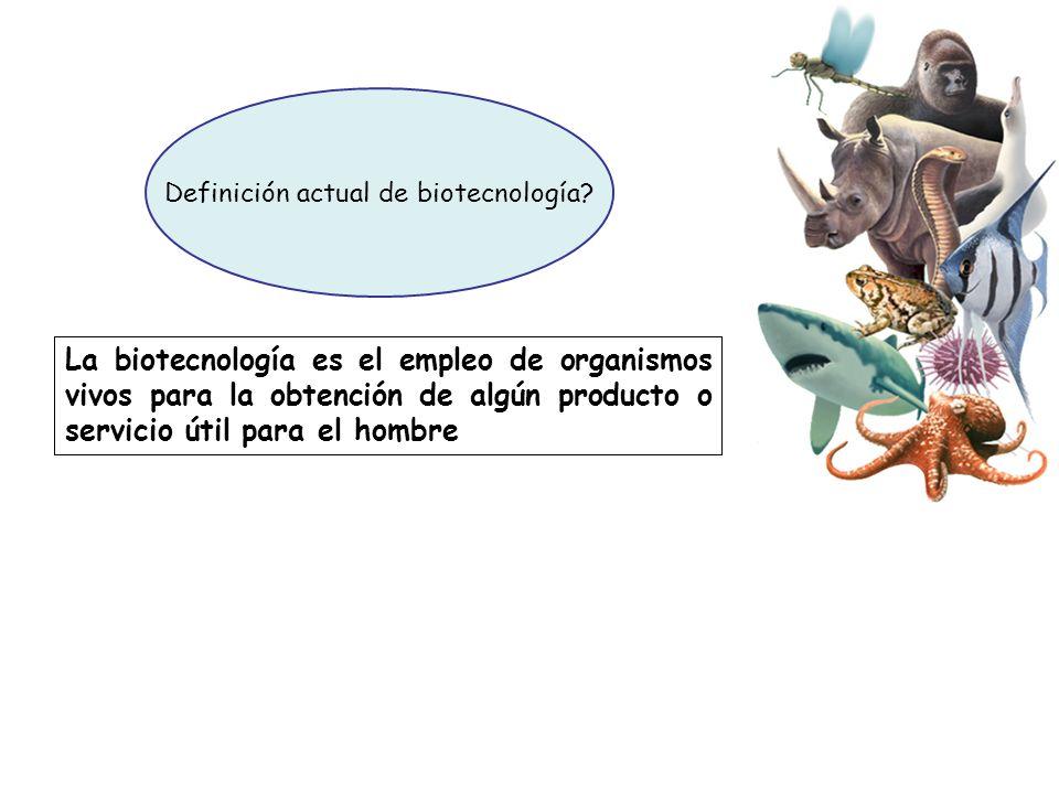 La biotecnología es el empleo de organismos vivos para la obtención de algún producto o servicio útil para el hombre Definición actual de biotecnologí
