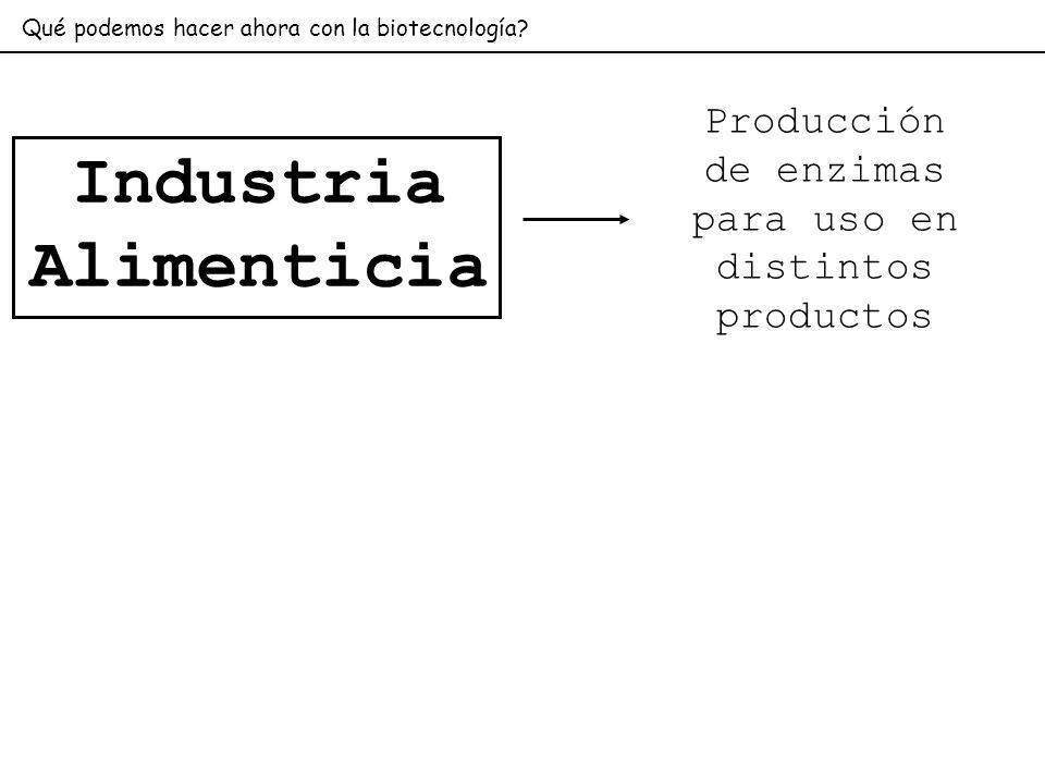Industria Alimenticia Qué podemos hacer ahora con la biotecnología? Producción de enzimas para uso en distintos productos