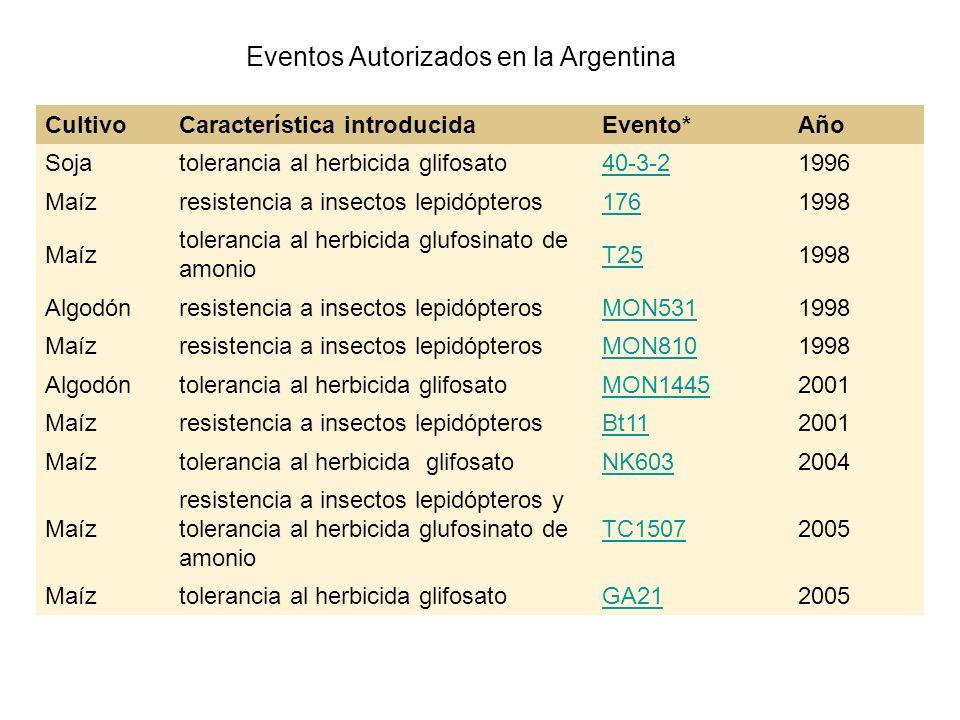 CultivoCaracterística introducidaEvento*Año Soja tolerancia al herbicida glifosato 40-3-21996 Maíz resistencia a insectos lepidópteros 1761998 Maíz to