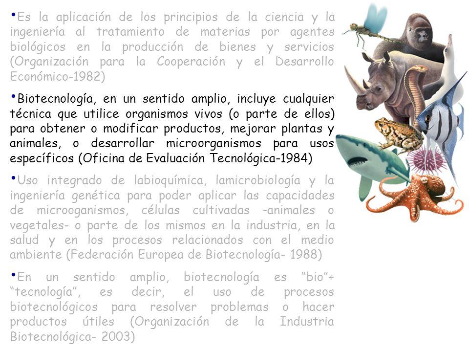 Es la aplicación de los principios de la ciencia y la ingeniería al tratamiento de materias por agentes biológicos en la producción de bienes y servic