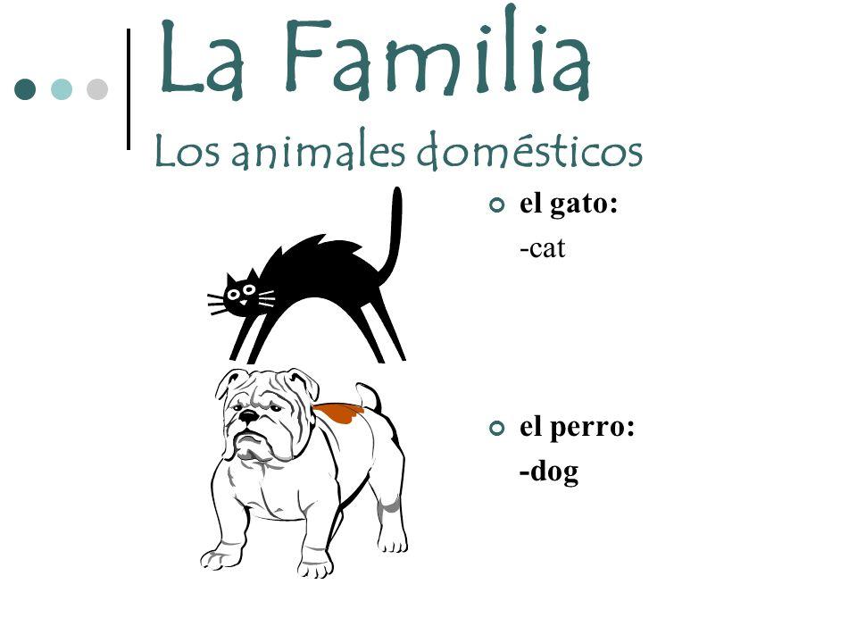 La Familia Los animales domésticos el gato: -cat el perro: -dog