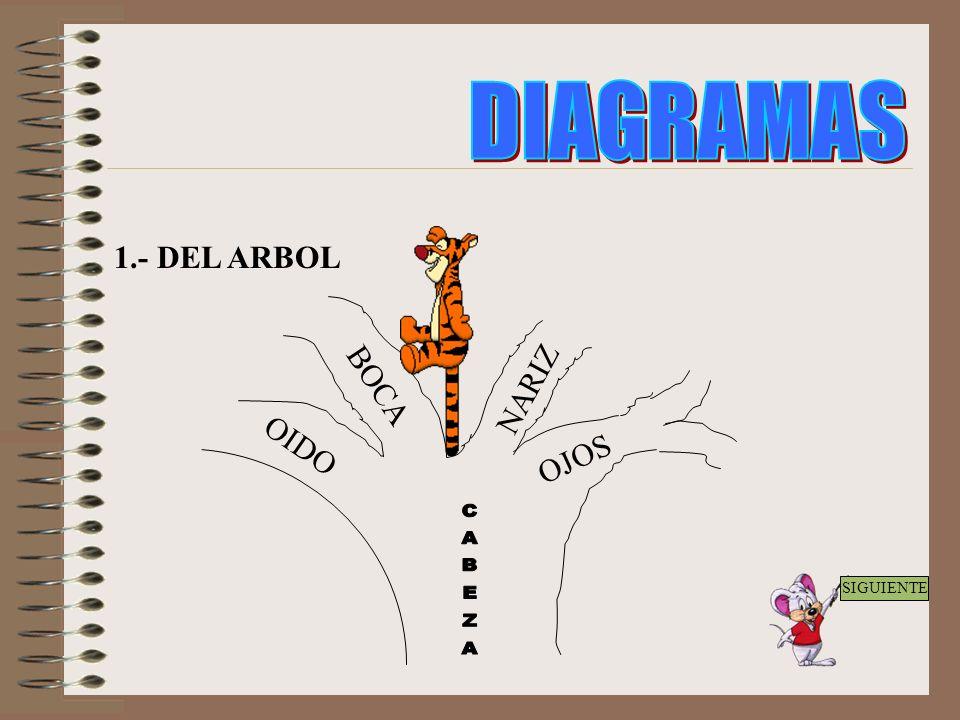 3.- Proceso o elaboración: Planteamiento del tema o subtema. Enumeración de palabras afines al tema o palabras bases de una lectura. Jerarquización Gr