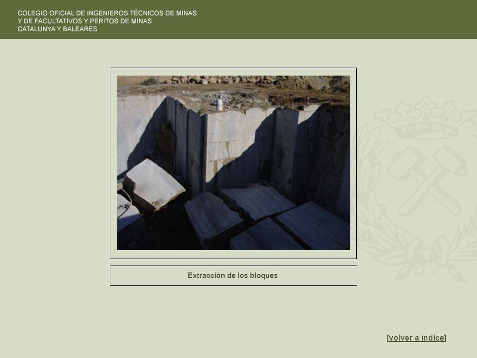 Extracción de los bloques [volver a índice]volver a índice