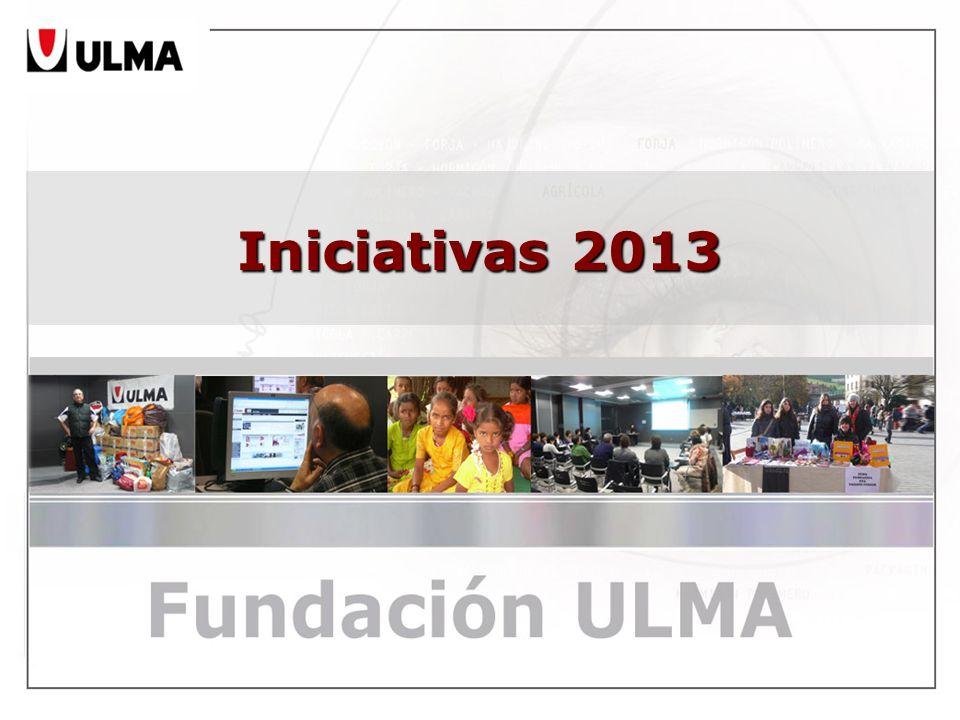 Iniciativas 2013