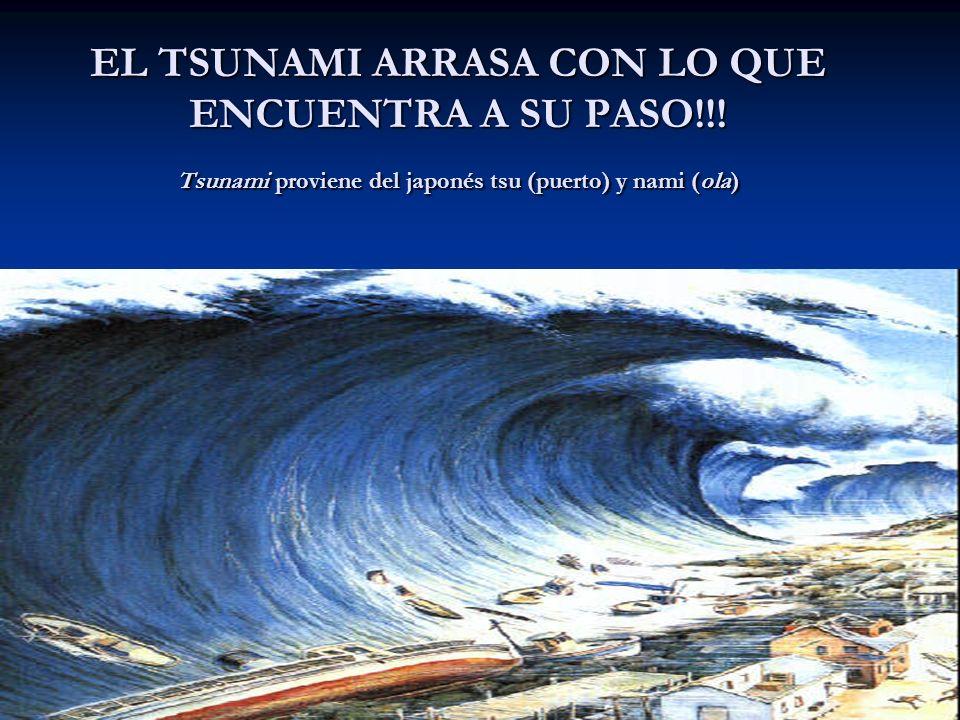 EL TSUNAMI ARRASA CON LO QUE ENCUENTRA A SU PASO!!! Tsunami proviene del japonés tsu (puerto) y nami (ola)
