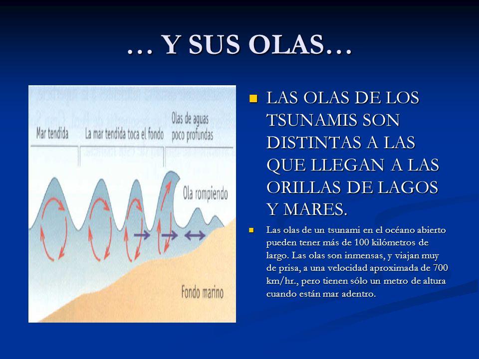 … Y SUS OLAS… LAS OLAS DE LOS TSUNAMIS SON DISTINTAS A LAS QUE LLEGAN A LAS ORILLAS DE LAGOS Y MARES. Las olas de un tsunami en el océano abierto pued