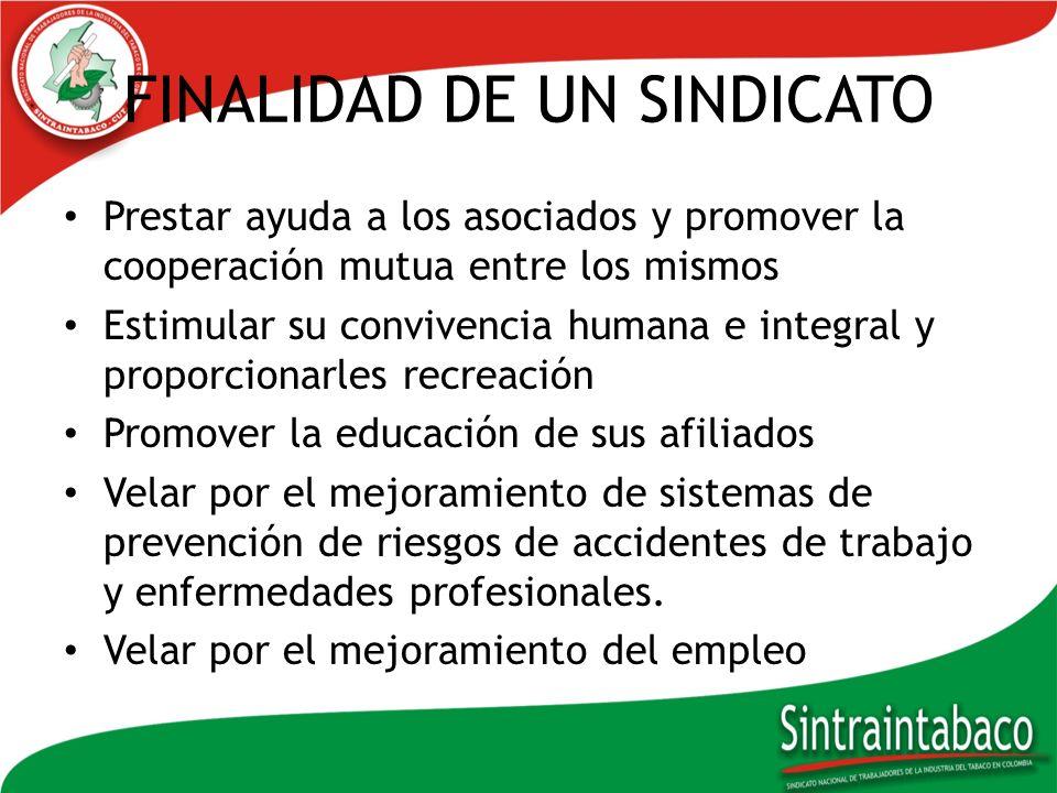 FINALIDAD DE LOS SINDICATOS En general la actividad de los sindicatos es realizar todas aquellas actividades contempladas en los estatutos.