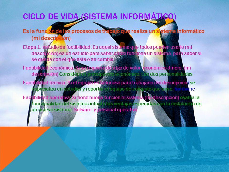 CICLO DE VIDA (SISTEMA INFORMÁTICO) Es la función de los procesos de trabajo que realiza un sistema informático (mi descripción ). Etapa 1. estudio de