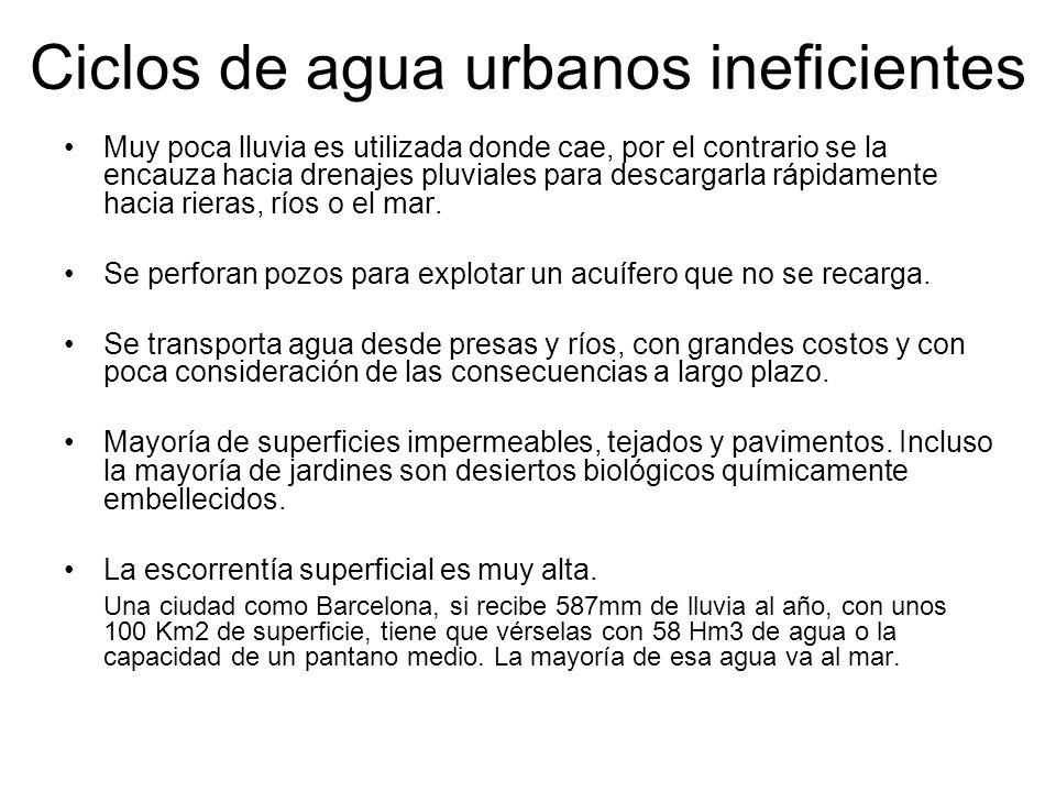 Ciclos de agua urbanos ineficientes Muy poca lluvia es utilizada donde cae, por el contrario se la encauza hacia drenajes pluviales para descargarla r