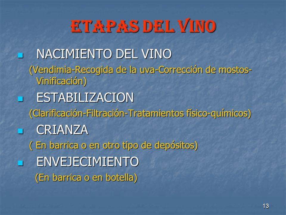 13 ETAPAS DEL VINO NACIMIENTO DEL VINO NACIMIENTO DEL VINO (Vendimia-Recogida de la uva-Corrección de mostos- Vinificación) (Vendimia-Recogida de la u