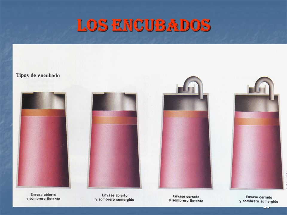 23 LOS ENCUBADOS