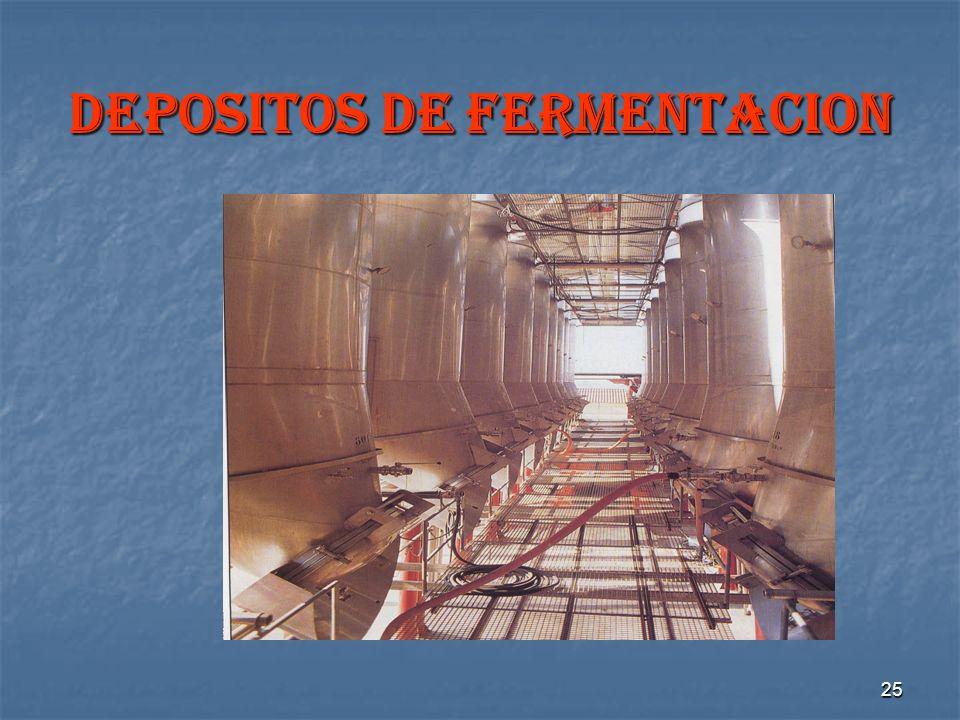 25 DEPOSITOS DE FERMENTACION