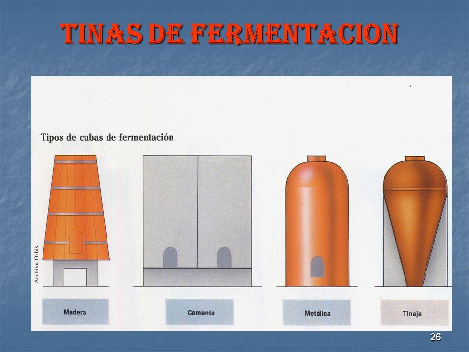 26 TINAS DE FERMENTACION