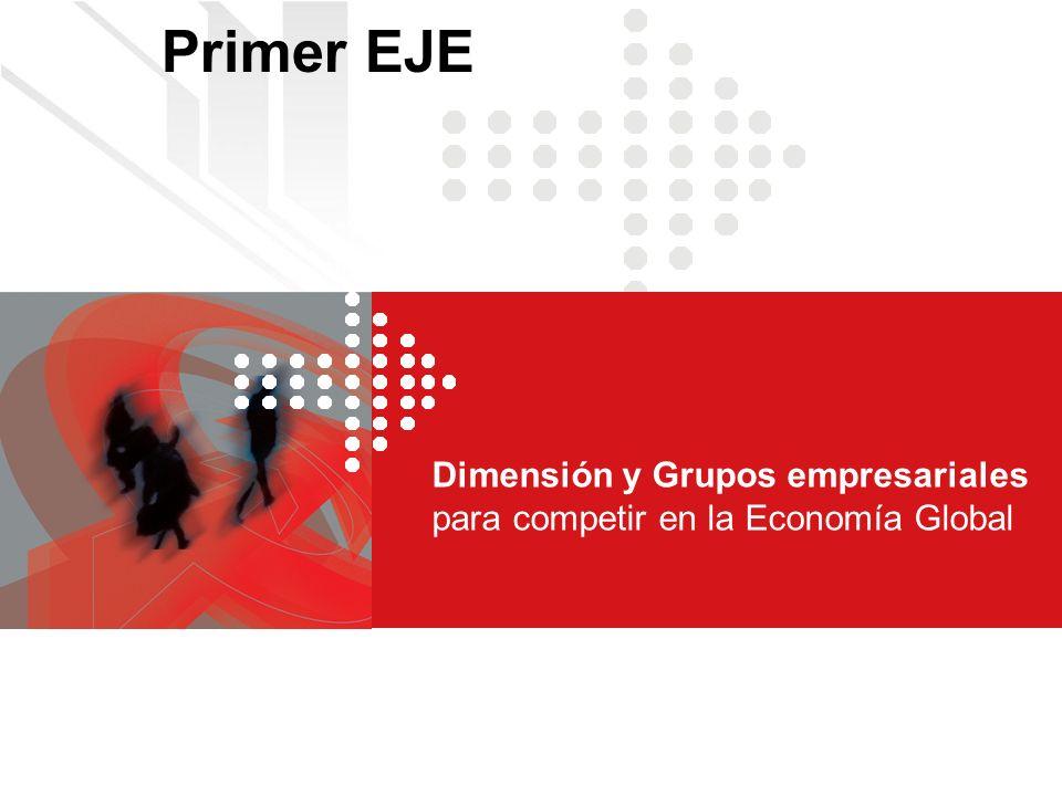 Dimensión y Grupos empresariales para competir en la Economía Global Primer EJE