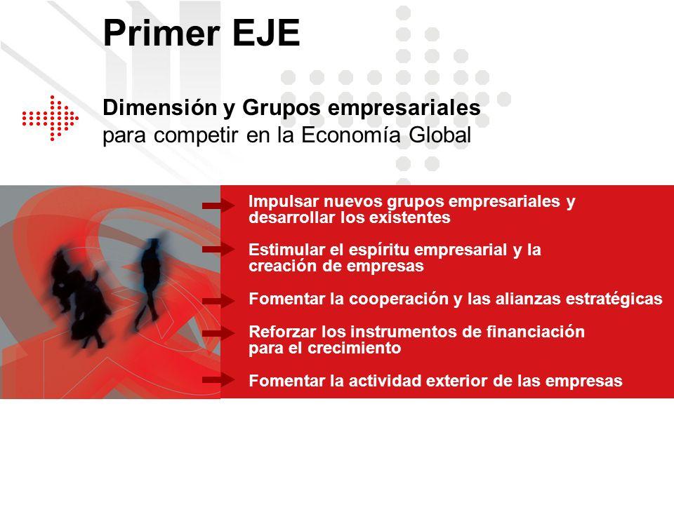 Dimensión y Grupos empresariales para competir en la Economía Global Impulsar nuevos grupos empresariales y desarrollar los existentes Fomentar la coo