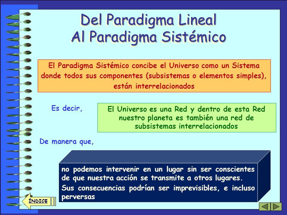 31 ÍNDICE Los Fundamentos (2) Del paradigma Lineal al paradigma Sistémico Las Redes concebidas como Organismos Vivos: el Paradigma Biológico La Red co