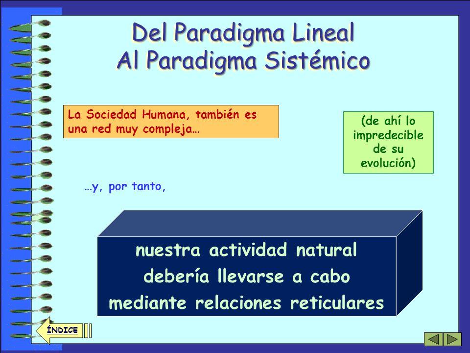 32 ÍNDICE Del Paradigma Lineal Al Paradigma Sistémico Es decir, De manera que, no podemos intervenir en un lugar sin ser conscientes de que nuestra ac