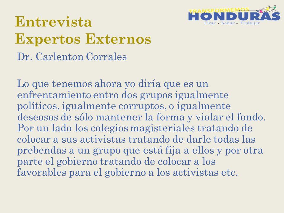 Entrevista Expertos Externos Dr.