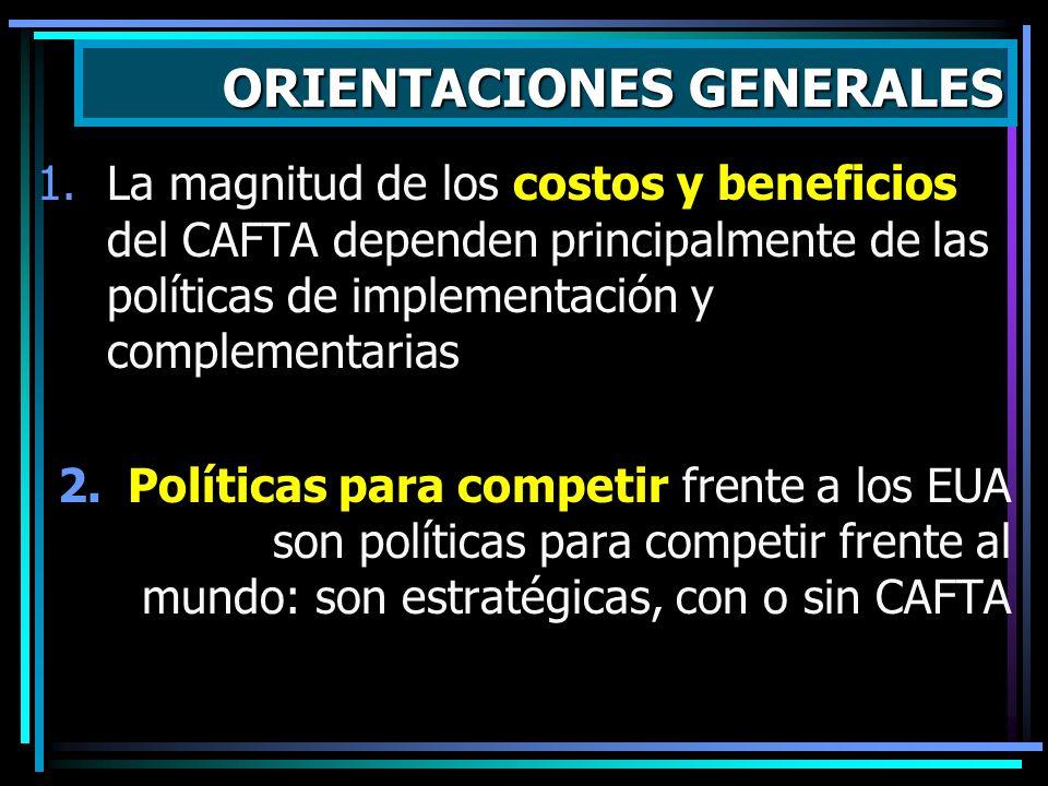 1.La magnitud de los costos y beneficios del CAFTA dependen principalmente de las políticas de implementación y complementarias 2.Políticas para compe