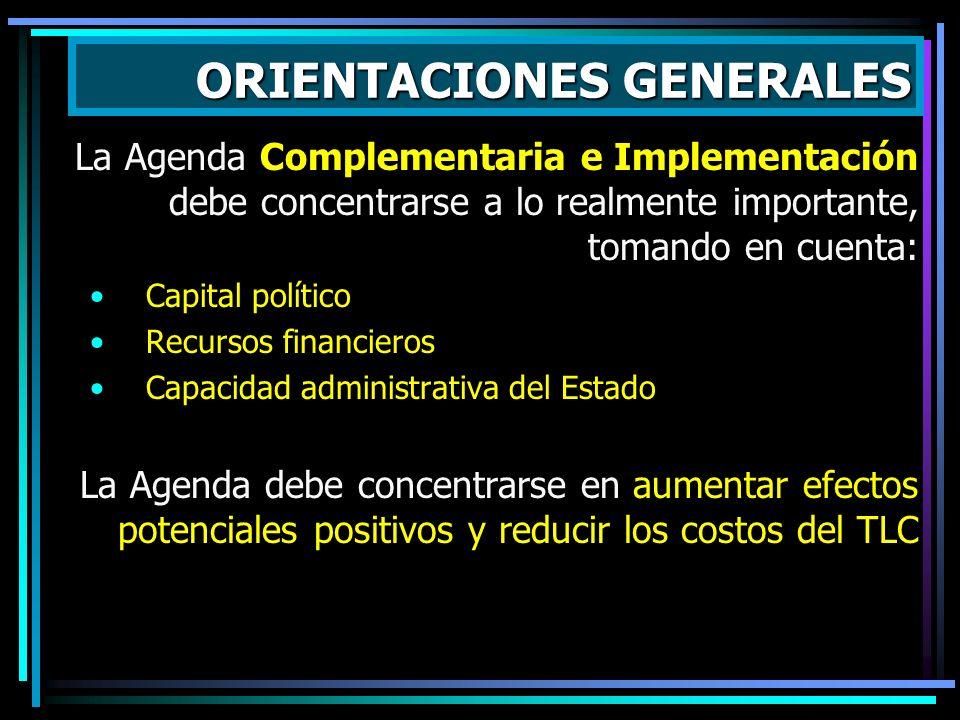 La Agenda Complementaria e Implementación debe concentrarse a lo realmente importante, tomando en cuenta: Capital político Recursos financieros Capaci