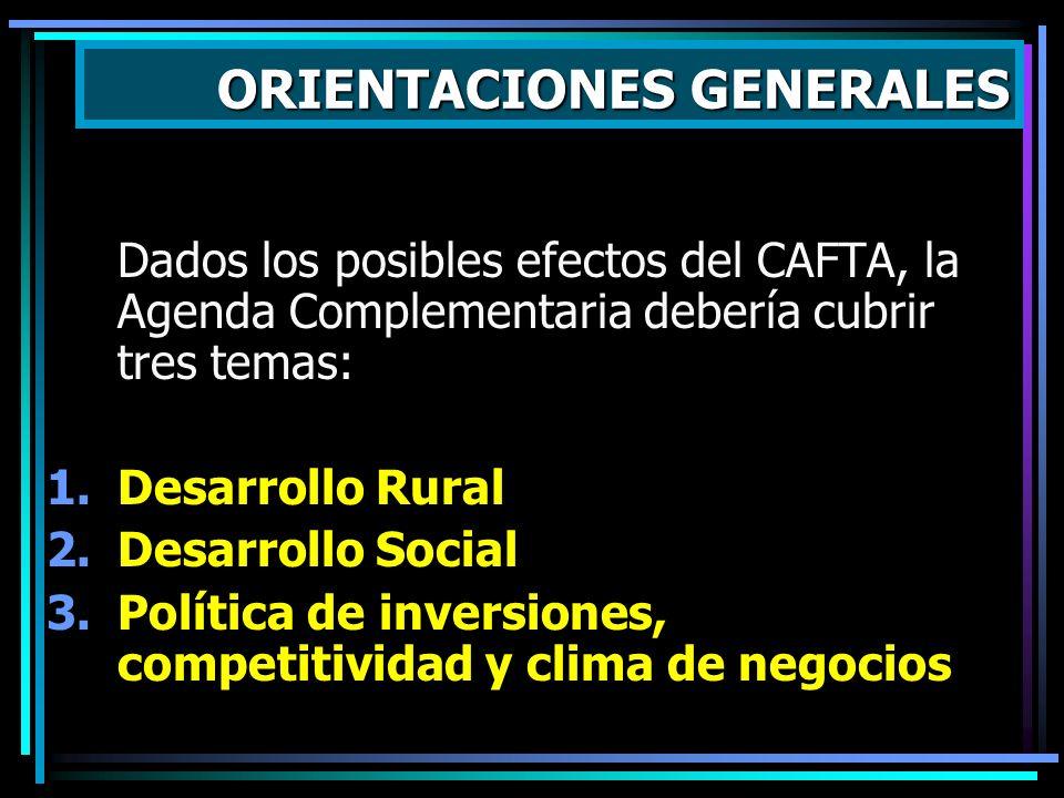 Dados los posibles efectos del CAFTA, la Agenda Complementaria debería cubrir tres temas: 1.Desarrollo Rural 2.Desarrollo Social 3.Política de inversi