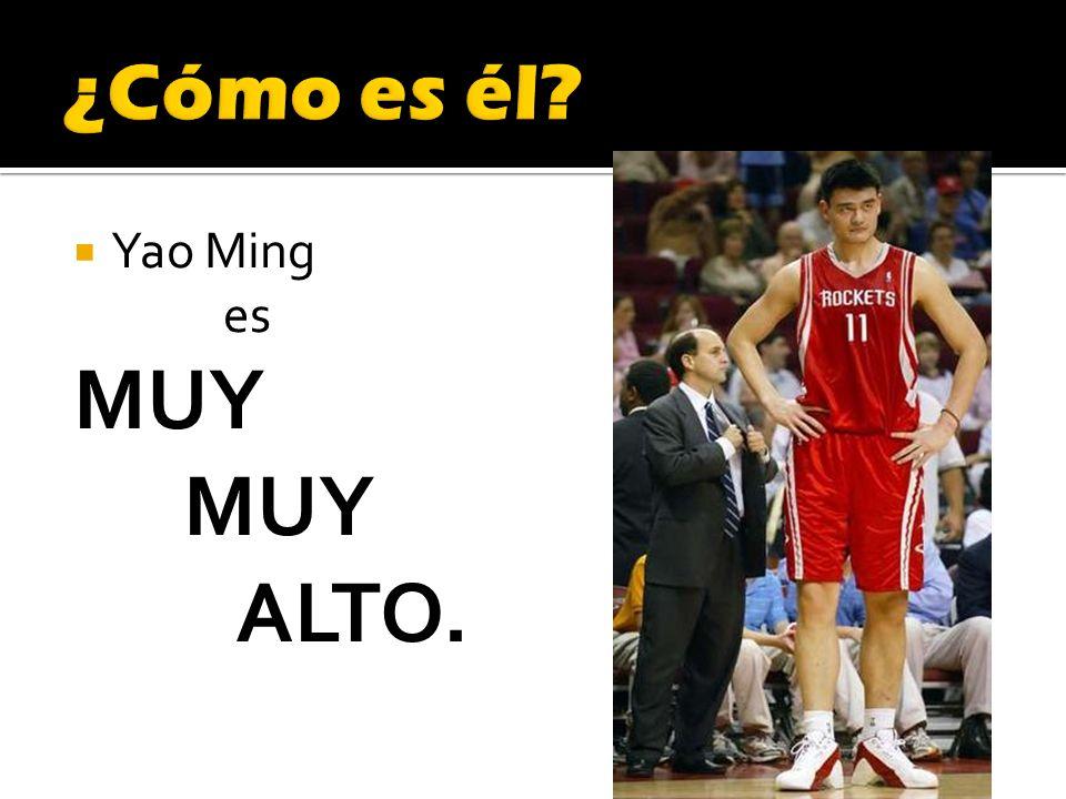 Yao Ming es MUY ALTO.