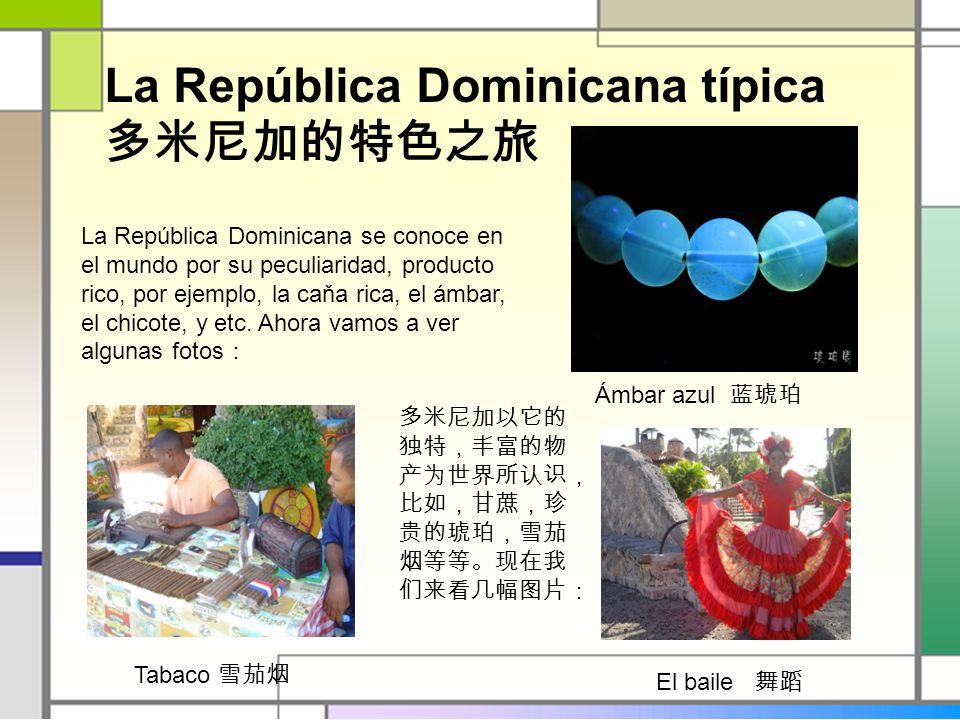 La República Dominicana típica La República Dominicana se conoce en el mundo por su peculiaridad, producto rico, por ejemplo, la caňa rica, el ámbar,