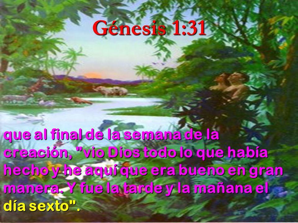 Génesis 1:31 que al final de la semana de la creación,