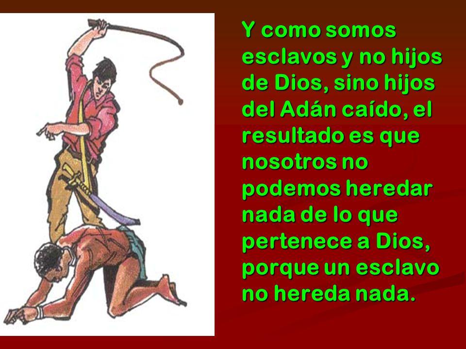 Y como somos esclavos y no hijos de Dios, sino hijos del Adán caído, el resultado es que nosotros no podemos heredar nada de lo que pertenece a Dios,