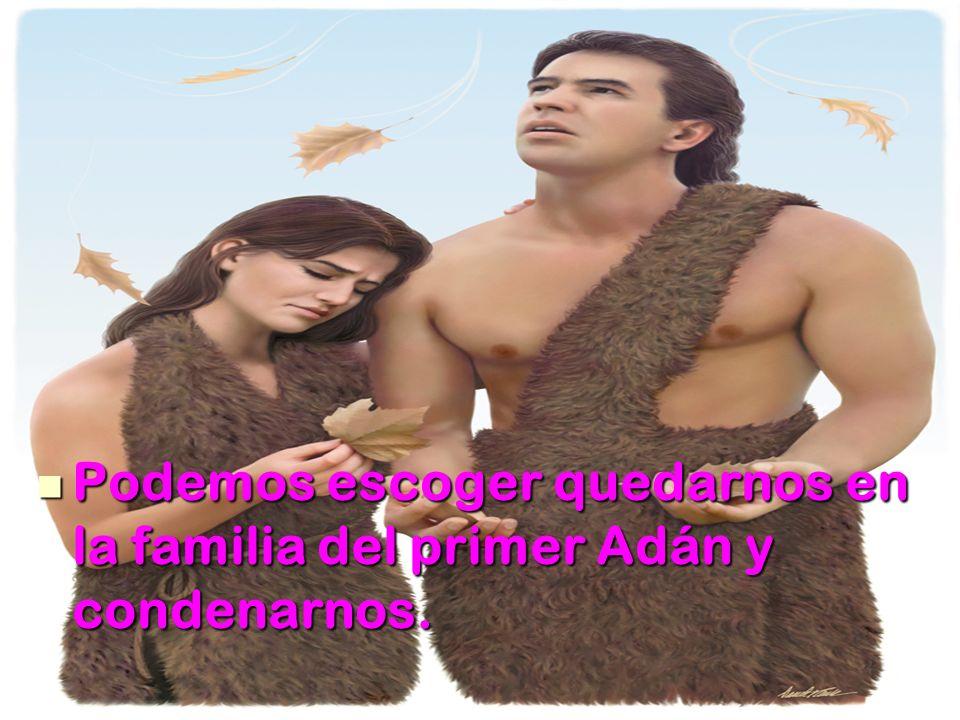 Podemos escoger quedarnos en la familia del primer Adán y condenarnos. Podemos escoger quedarnos en la familia del primer Adán y condenarnos.