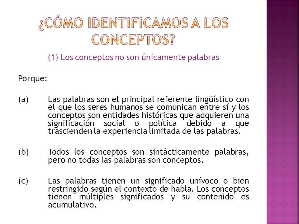6) Señala que criterio utilizarás para distinguir a tus conceptos de otros.