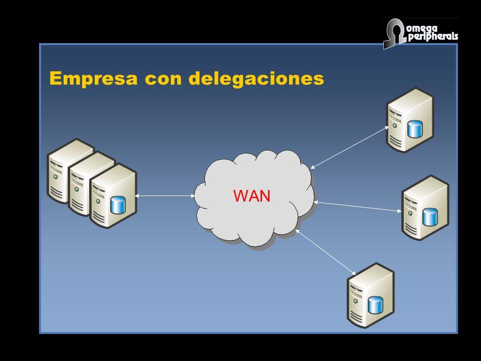 Empresa con delegaciones WAN