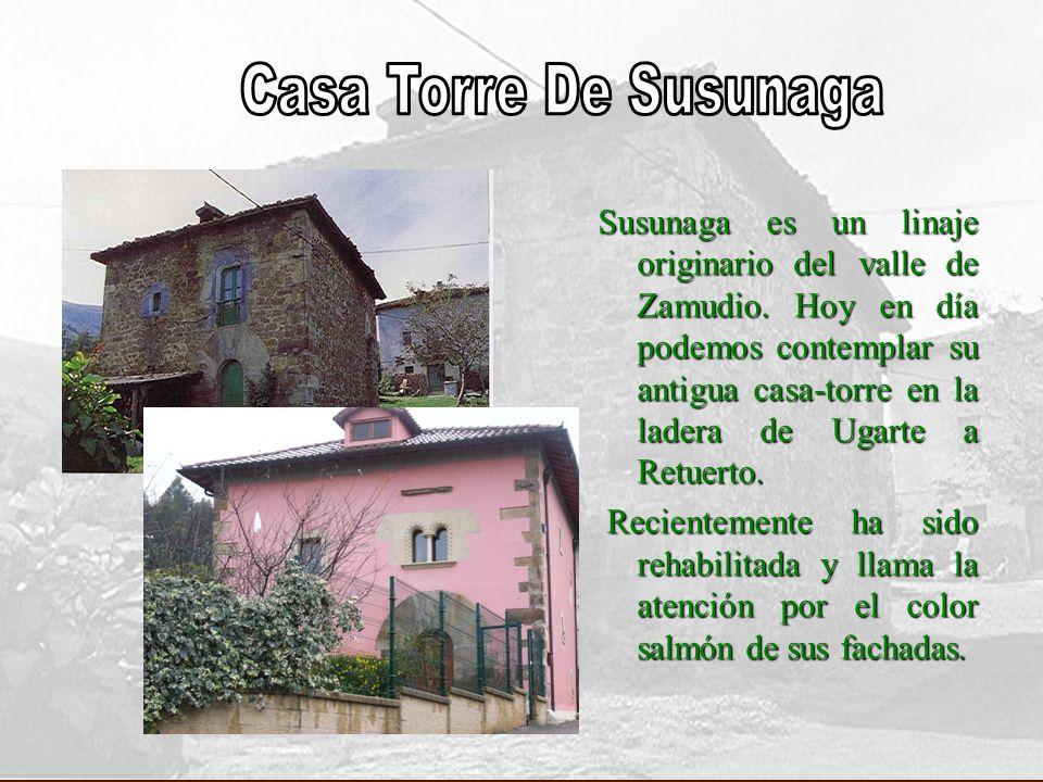 Susunaga es un linaje originario del valle de Zamudio. Hoy en día podemos contemplar su antigua casa-torre en la ladera de Ugarte a Retuerto. Reciente