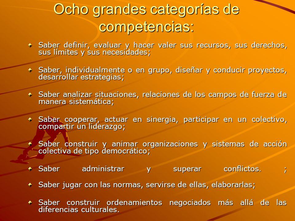 Ocho grandes categorías de competencias: Saber definir, evaluar y hacer valer sus recursos, sus derechos, sus límites y sus necesidades; Saber, indivi