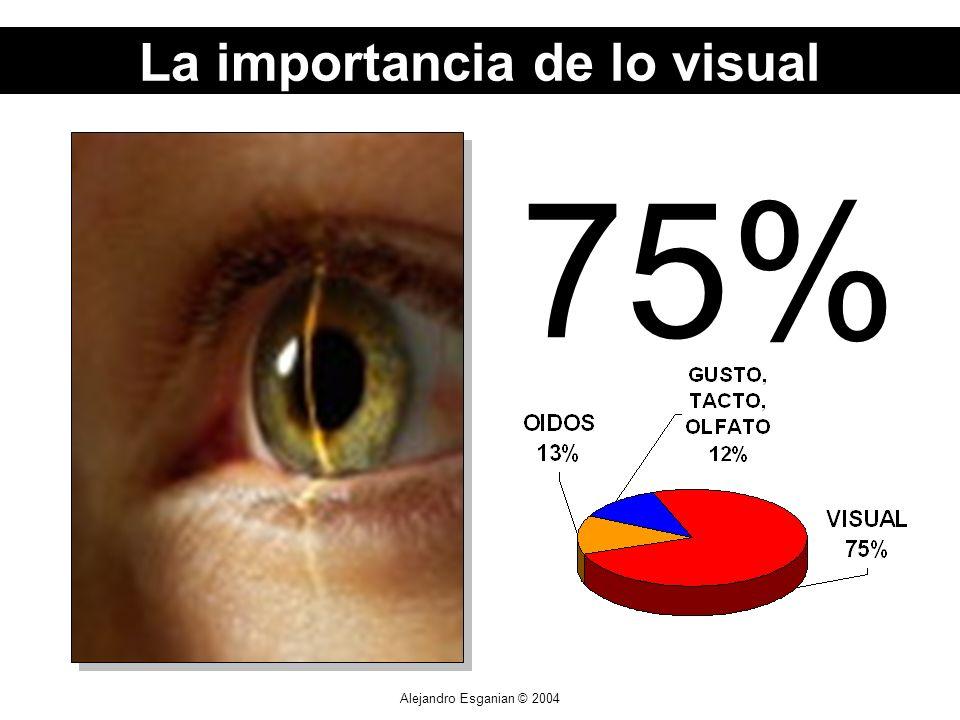 Alejandro Esganian © 2004 75% La importancia de lo visual