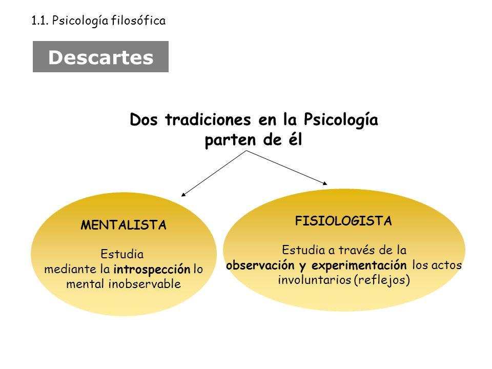 Dos tradiciones en la Psicología parten de él MENTALISTA Estudia mediante la introspección lo mental inobservable FISIOLOGISTA Estudia a través de la