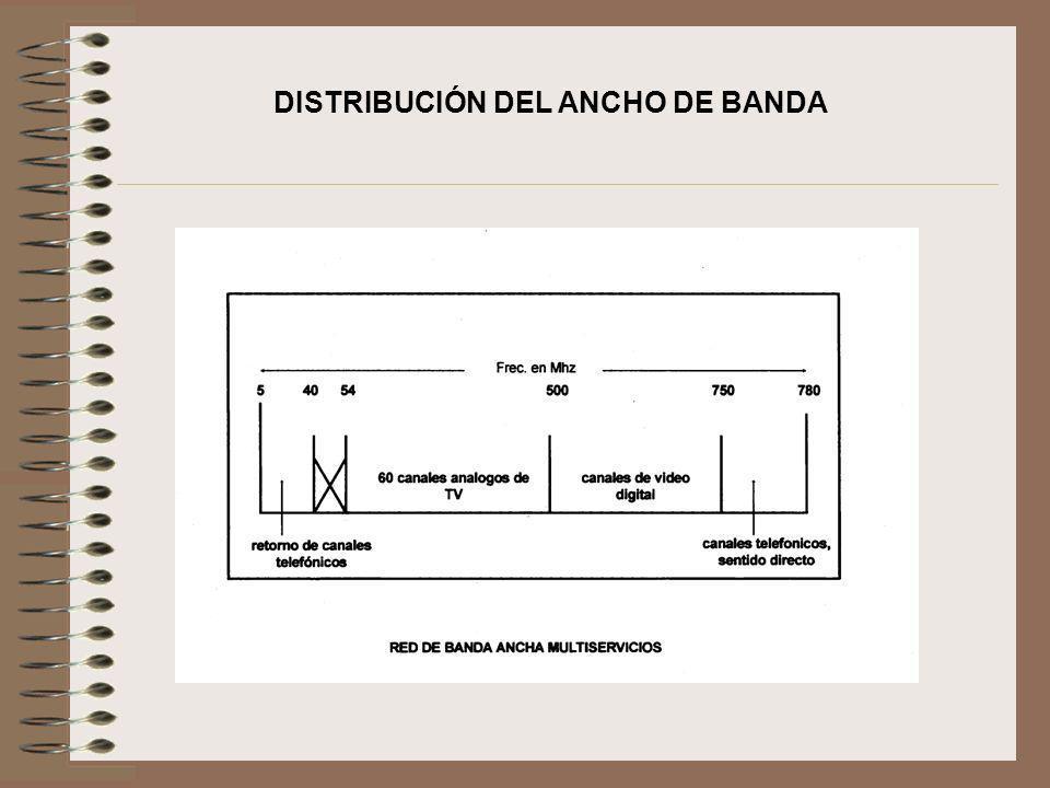 DISTRIBUCIÓN DEL ANCHO DE BANDA