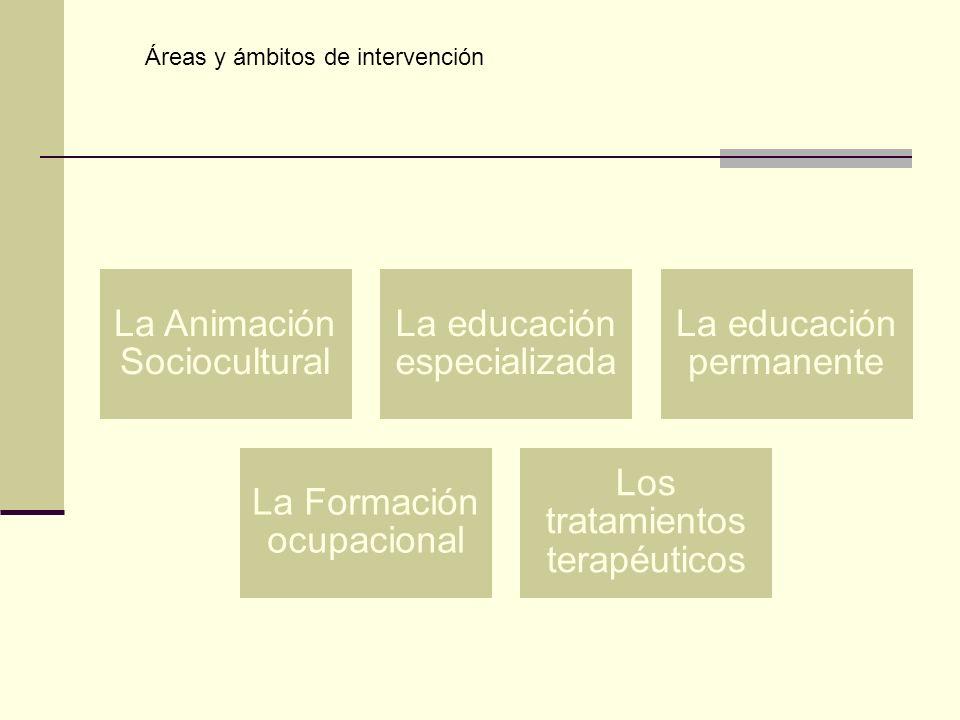La Animación Sociocultural La educación especializada La educación permanente La Formación ocupacional Los tratamientos terapéuticos Áreas y ámbitos d