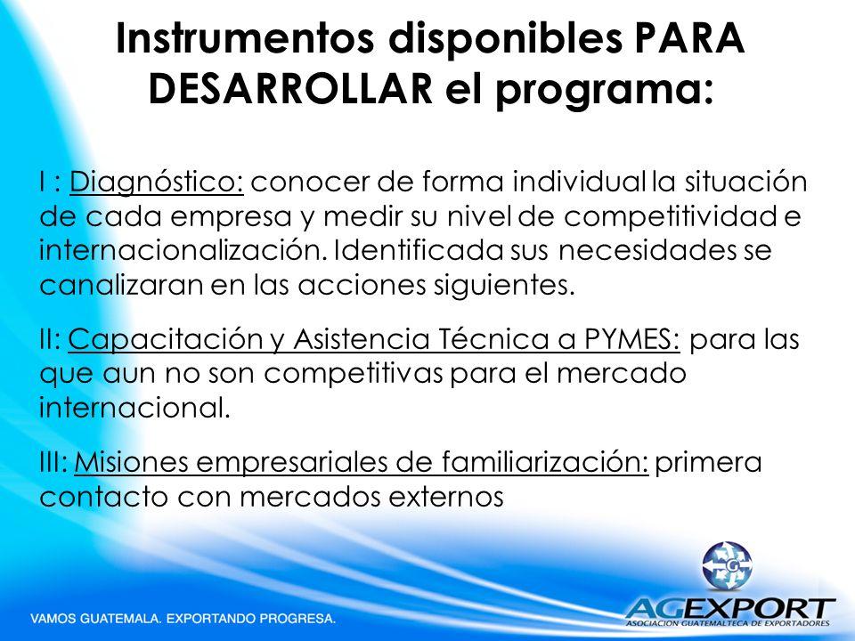 Instrumentos disponibles PARA DESARROLLAR el programa: I : Diagnóstico: conocer de forma individual la situación de cada empresa y medir su nivel de c